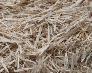 Shredded Pine